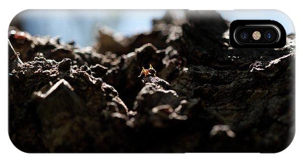 Ant IPhone Case