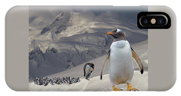 Antarctic Magesty IPhone Case