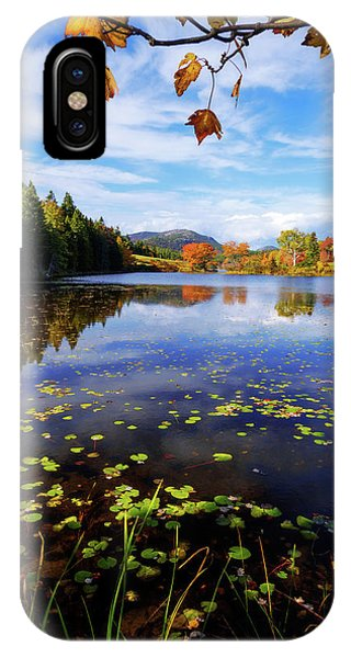 Deciduous iPhone Case - Anticipation by Chad Dutson