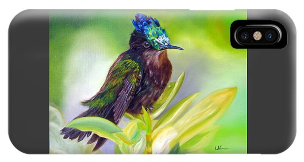 Antillean Crested Hummingbird IPhone Case