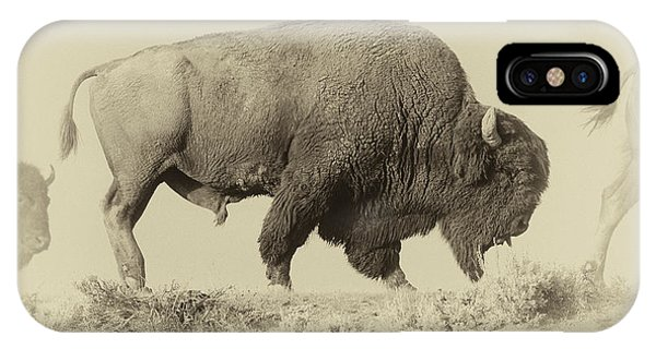 Yellowstone National Park iPhone Case - Antique Bison by Shane Linke