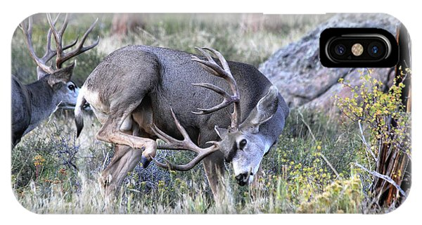 IPhone Case featuring the photograph Antler Scratch by Shane Bechler