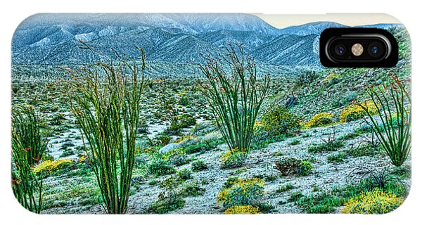 Anza Borrego Twillight IPhone Case