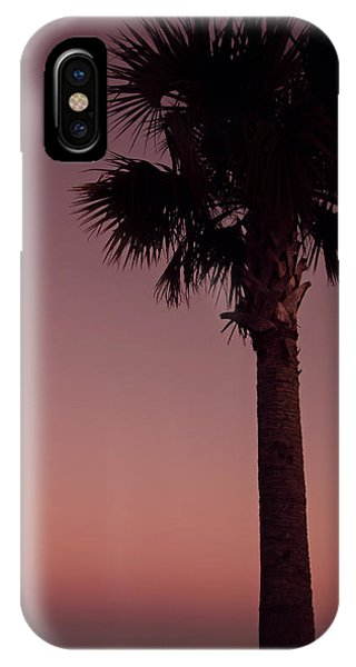 Apalachicola Palm IPhone Case