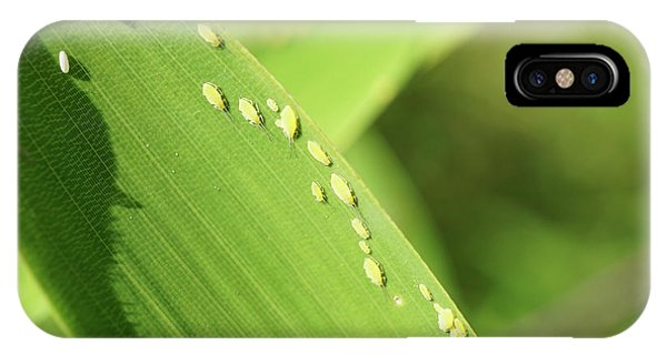 Aphid Family IPhone Case