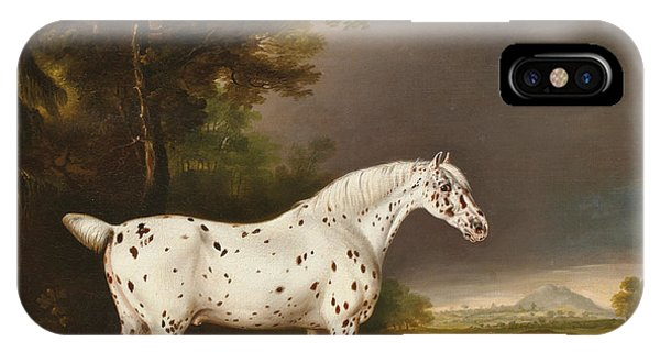 Mottled iPhone Case - Appaloosa Horse And Spaniel by Thomas Weaver