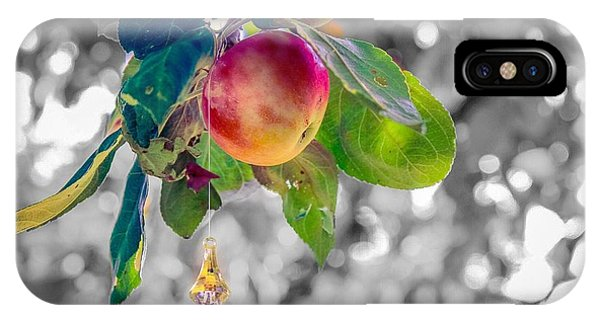 IPhone Case featuring the photograph Apple And The Diamond by Sven Kielhorn