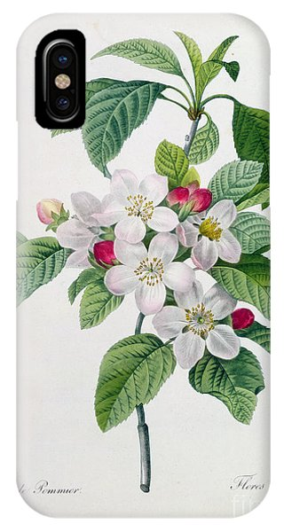 Botanical iPhone Case - Apple Blossom by Pierre Joseph Redoute