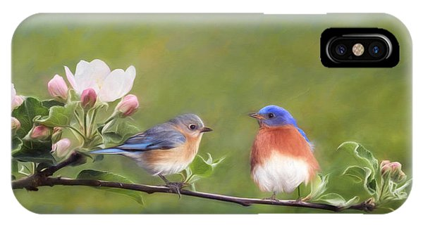 Apple Blossoms And Bluebirds IPhone Case