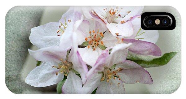 Apple Blossoms From My Hepburn Garden IPhone Case