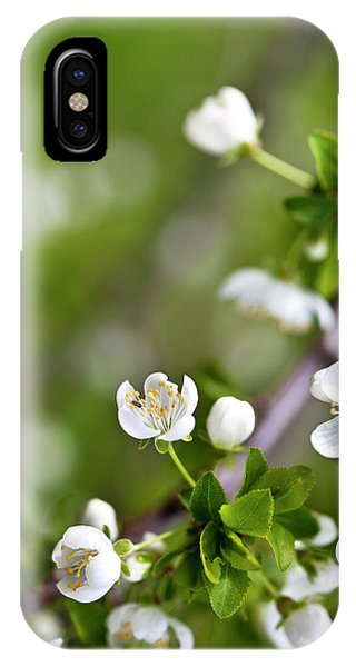Blossom iPhone Case - Apple Blossoms by Nailia Schwarz