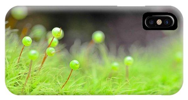 Apple Moss IPhone Case
