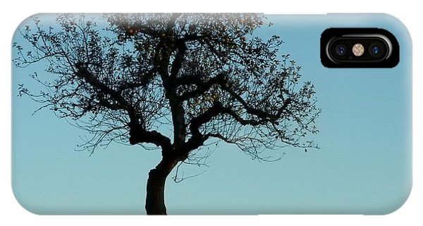 Apple Tree In November IPhone Case