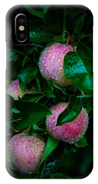 Apples After The Rain IPhone Case