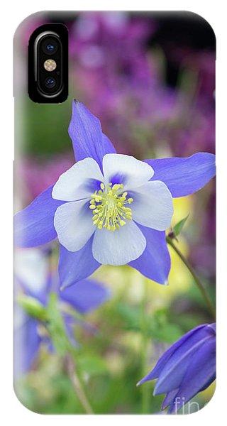 Aquilegia iPhone Case - Aquilegia Swan Blue by Tim Gainey