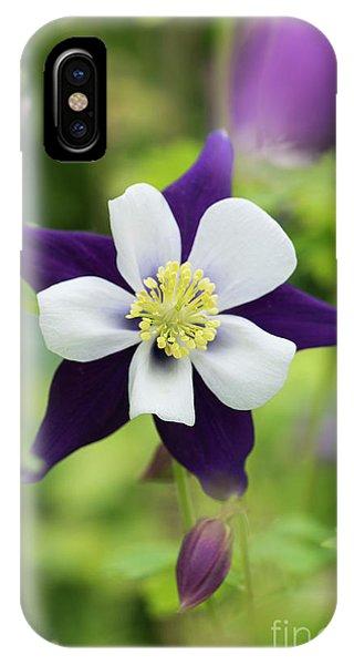 Aquilegia iPhone Case - Aquilegia Swan Violet And White by Tim Gainey