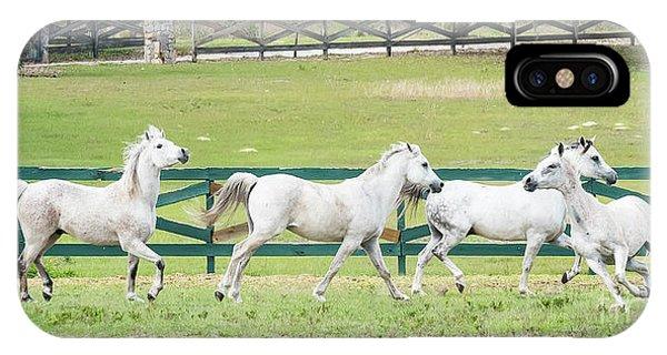 Arabian Horses IPhone Case