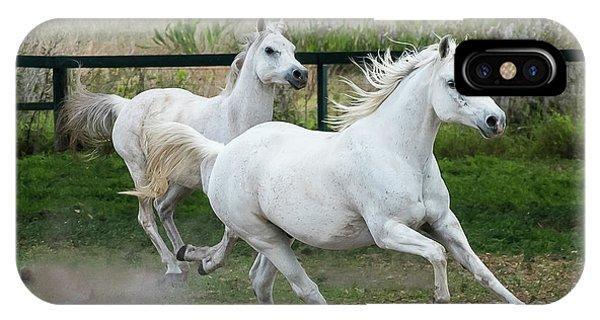 Arabian Horses Running IPhone Case