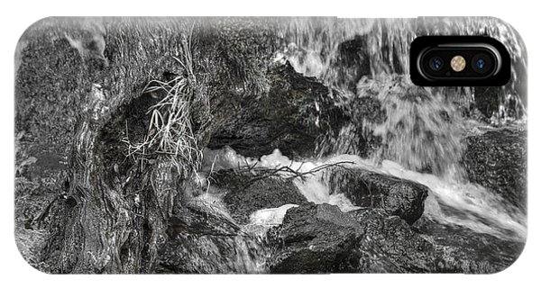 Arboretum Waterfall Bw IPhone Case