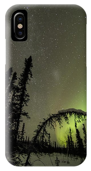 Arched Spruce Aurora IPhone Case