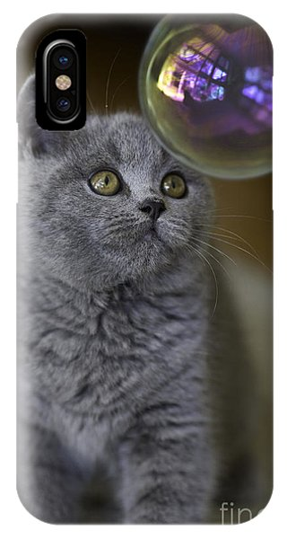 Kitten iPhone Case - Archie With Bubble by Sheila Smart Fine Art Photography