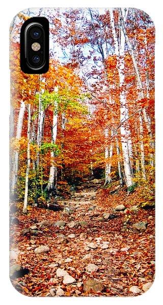 Arethusa Falls Trail IPhone Case