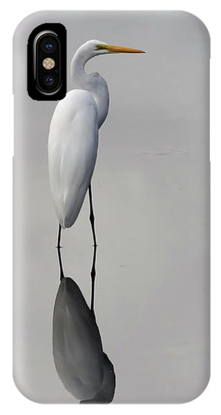 Argent Mirror #2 IPhone Case