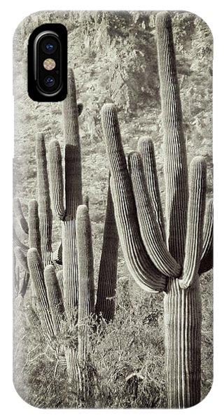 Arizona Desert 2 IPhone Case