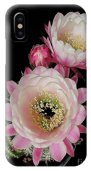 Arizona Desert Cactus Flowers IPhone Case