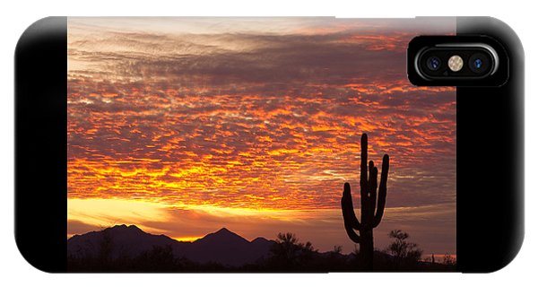 Arizona November Sunrise With Saguaro   IPhone Case