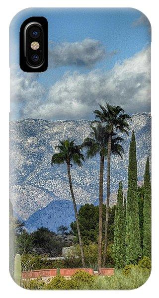 Arizona Snow IPhone Case