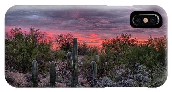 Arizona Sunset IPhone Case