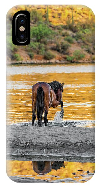 Arizona Wild Horse Playing In Water IPhone Case