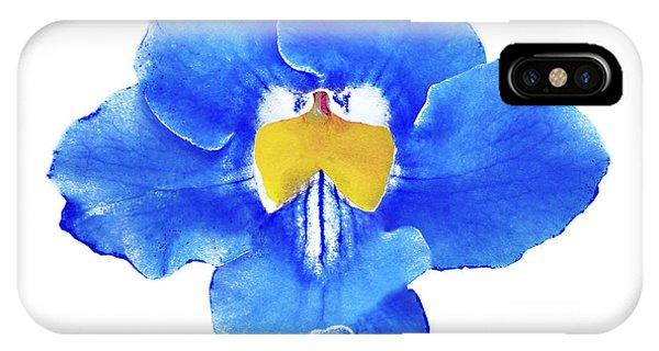 Art Blue Beauty IPhone Case