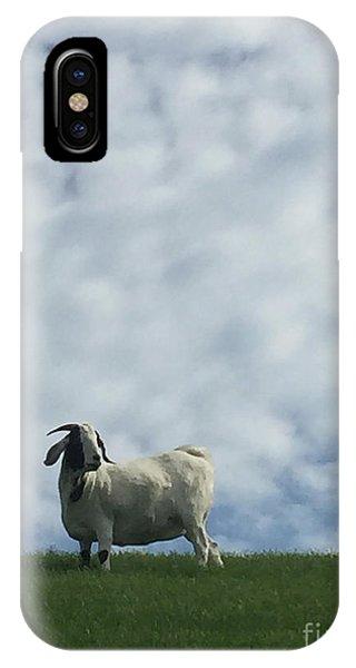 iPhone Case - Art Goat by Margie Hurwich
