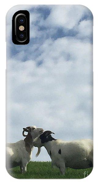 iPhone Case - Art Goats II by Margie Hurwich