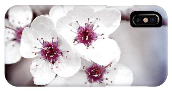 Art Of Spring IPhone Case
