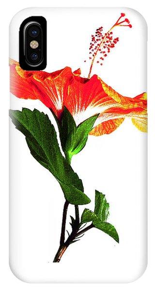 Art Orange IPhone Case