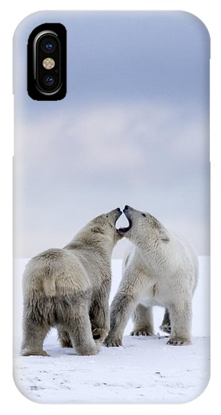 Artic Antics IPhone Case