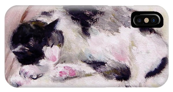 Artist's Cat Sleeping IPhone Case