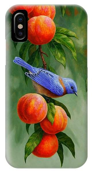Bluebird iPhone Case - Bird Painting - Bluebirds And Peaches by Crista Forest