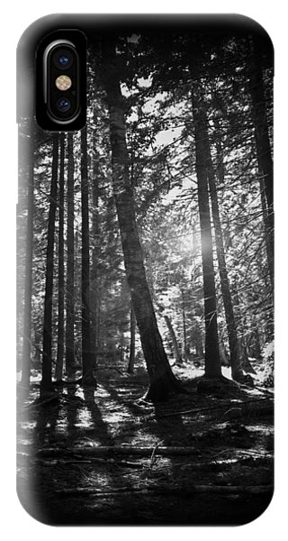 Woods iPhone Case - Shining Through by Nicklas Gustafsson