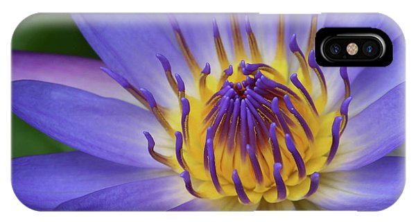 IPhone Case featuring the photograph The Lotus Flower by Sharon Mau