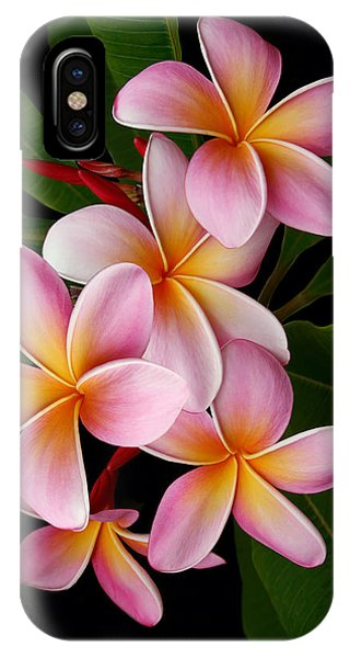 Wailua Sweet Love IPhone Case