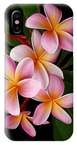 IPhone Case featuring the photograph Wailua Sweet Love by Sharon Mau