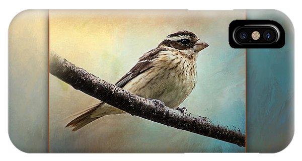 Wisconsin Songbird IPhone Case