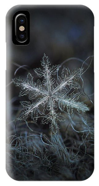 Leaves Of Ice IPhone Case