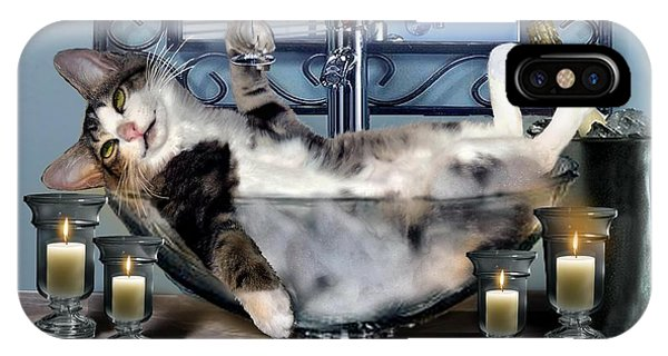 Funny Pet Print With A Tipsy Kitty  IPhone Case