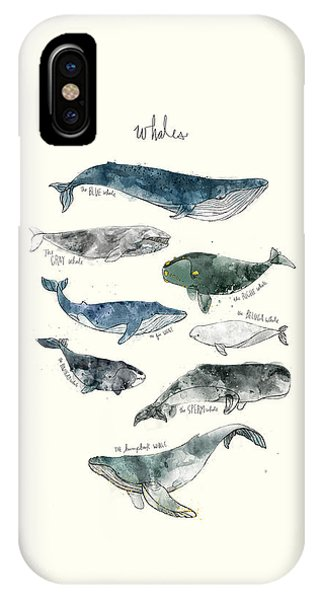 Fins iPhone Case - Whales by Amy Hamilton