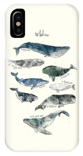 Cute iPhone Case - Whales by Amy Hamilton